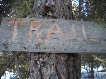"Routered Wooden Trail Sign says, ""TRAIL""."
